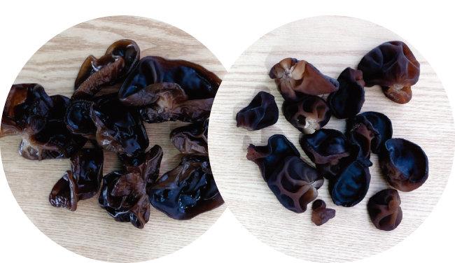 일반 목이버섯(왼쪽)과 눈꽃목이. [사진 제공 · 김민경]