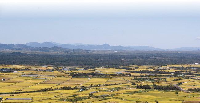 소이산 정상에서 바라 본 철원평야와 DMZ. 띠처럼 수풀로 덮여 남북을 구분하고 있는 곳이 DMZ다. [지호영 기자]