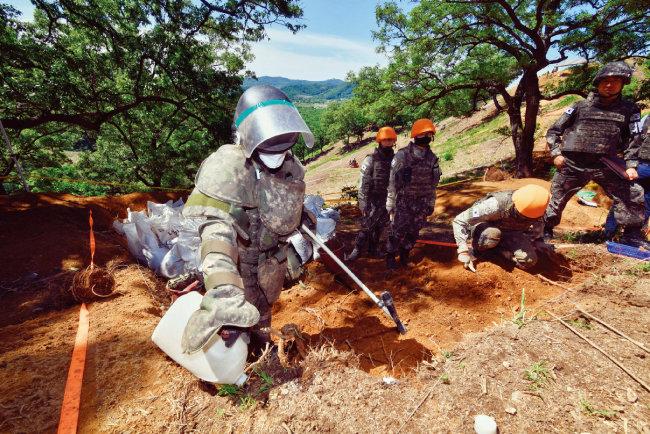 남북은 공동 유해 발굴을 위한 지뢰 제거 작업을 하고 있는 강원 철원 비무장지대(DMZ) 내 화살머리고지에 전술 도로를 연결했다. [뉴시스]