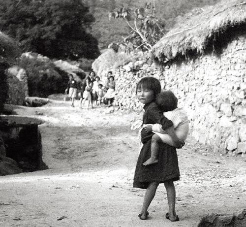 아기를 업고 있는 여자아이. 당시에는 이렇게 바쁜 부모를 대신해 형제자매가 어린 동생들을 돌보는 일이 흔했다. 사진 정면에 울창하게 보이는 것은 천연기념물인 비자나무. [사진 제공 · 일조각]