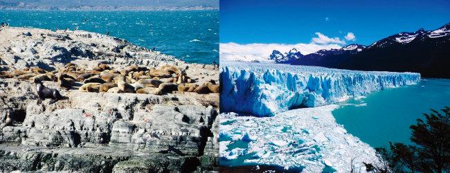 아르헨티나 우수아이아 해변의 바다사자와 펭귄(왼쪽), 로스글라시아레스 국립공원의 빙하. [위키피디아]