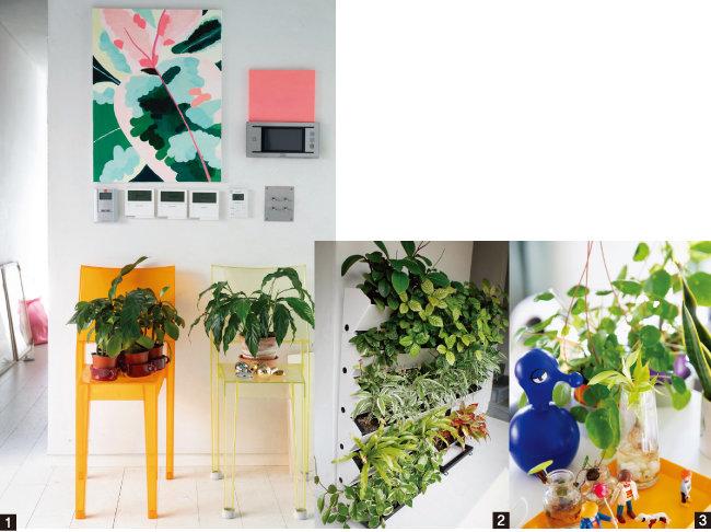 1 대칭적으로 놓은 화분과 식물 그림이 어우러져 인테리어 효과를 준다. 2 1층에서 2층으로 올라가는 위치에 둔  벽 화분. 3 식물을 물에 담가 키우는 물꽂이(수경재배)는 초보자도 도전하기 쉽다. [지호영 기자, 사진 제공 · 정재경]