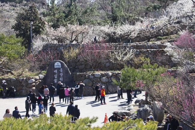 봄을 즐기는 관람객들.