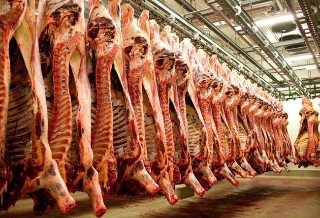 중국으로 수출되는 호주산 쇠고기들. [FoodMag.au]