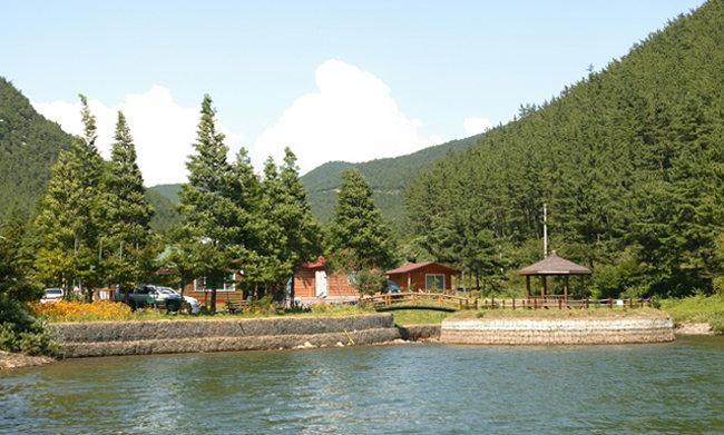 천연 해송림을 만날 수 있는 희리산해송자연휴양림.