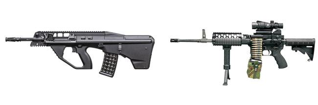 다산기공이 생산한 소총들. DSR90(왼쪽). DSMG556. [다산기공]