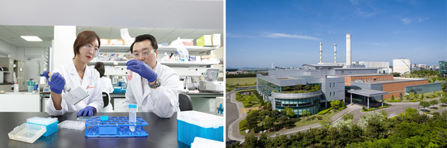 SK바이오팜 연구소에서 연구원들이 실험을 하고 있다(왼쪽). 셀트리온 제1공장. [SK, 셀트리온 제공]