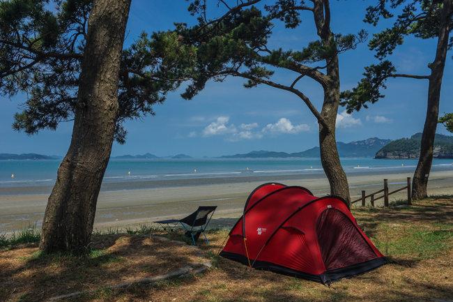 전남 진도군 관매도해변의 아름다운 해송숲이 눈길을 끈다. [양영훈 여행작가]