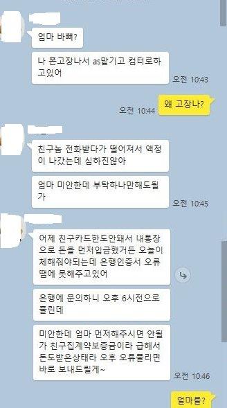 SNS 피싱 사기꾼과 피해자가 주고받은 대화 내용.
