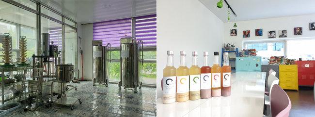 서울 강남구 개포동의 'C막걸리' 양조장(왼쪽)과 C막걸리 제품들. [명욱 제공]