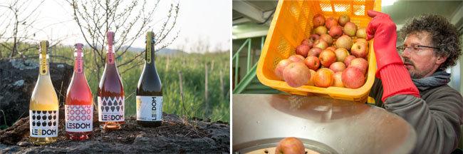 충북 충주에서 생산되는 사과 발포주 '레돔 시드르'(왼쪽)와 이 술을 만드는 프랑스 출신의 도미니크 에어케 씨. [레돔 시드르 제공]