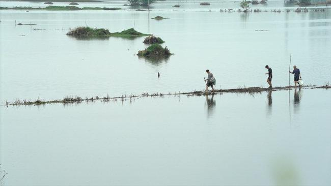중국 남부지역에서 농부들이 물에 잠긴 경작지를 둘러보고 있다. [CGTN]