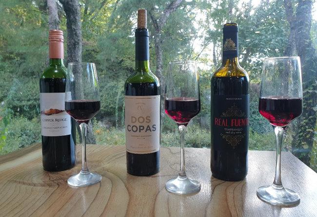 직접 비교 시음해 본 마트 3사의 초저가 레드 와인. 왼쪽부터 홈플러스 카퍼 릿지(카베르네 쇼비뇽 포도 품종), 이마트 도스 코파스(카베르네 쇼비뇽 포도 품종), 레알 푸엔테(템프라니요 포도 품종).