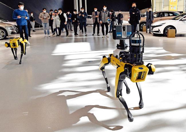 현대자동차그룹이 12월 16일부터 이틀간 현대모토스튜디오 고양에서 글로벌 로봇 업체 보스턴 다이나믹스의 로봇개 '스팟'을 시연했다. [사진 제공 · 현대자동차그룹]
