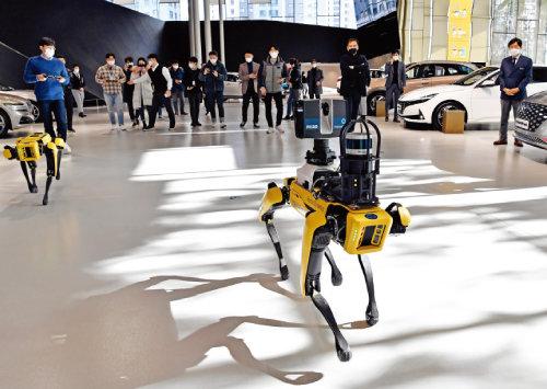 현대자동차그룹이 지난해 현대모토스튜디오 고양에서 글로벌 로봇 업체 보스턴 다이나믹스의 로봇개 '스팟'을 시연했다. [사진 제공 · 현대자동차그룹]