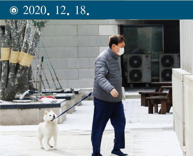 정직 2개월 징계처분을 받은 윤석열 당시 검찰총장이 서울 서초구 자택 근처에서 진돗개로 보이는 반려견과 함께 산책하고 있다. [동아DB]