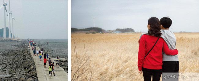 대부도 탄도항(왼쪽), 시화호갈대습지공원.
