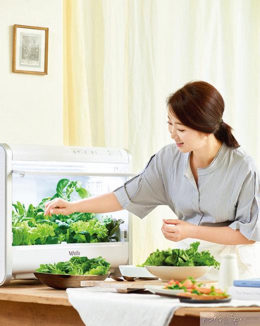 우리 아이 채소 식습관이 자라는 윤유선의 '웰스팜' 건강 식탁