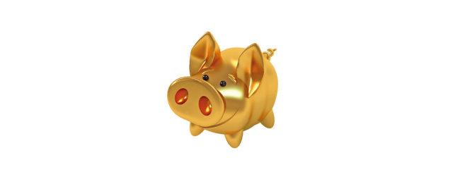황금 돼지꿈 데려가세요