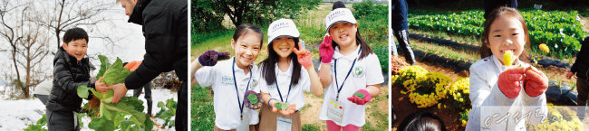 에더블국제학교 학생들은 텃밭을 직접 가꾸며 자연의 소중함을 배우고 영어를 놀이처럼 익힌다.