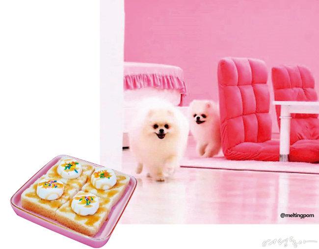 여심 홀릭 귀염뽀짝 핑크 카페