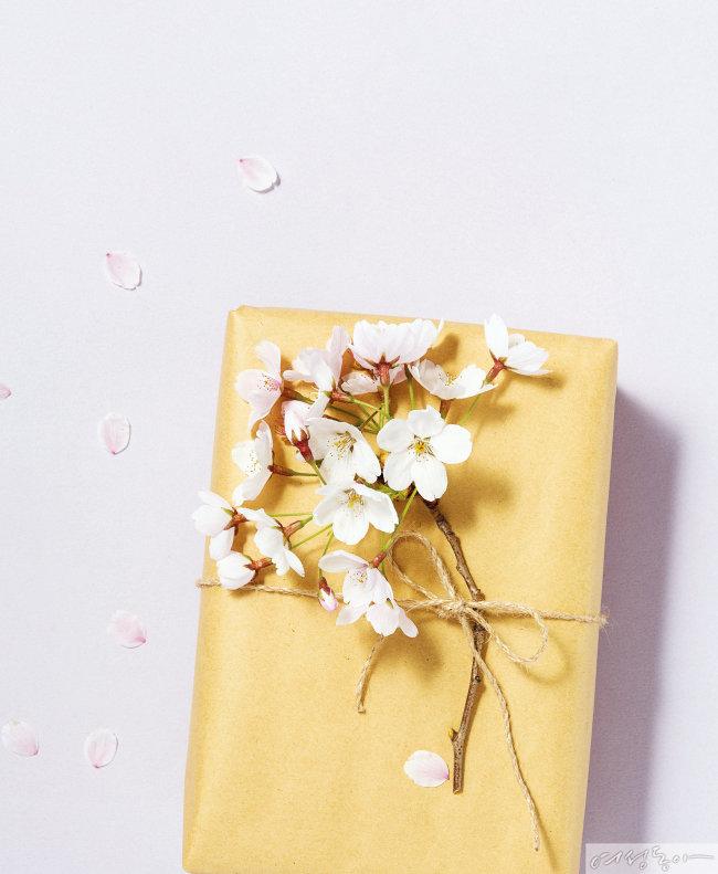 인플루언서 추천! 받은 사람이 두고두고 좋아하는 선물 리스트 The Gift