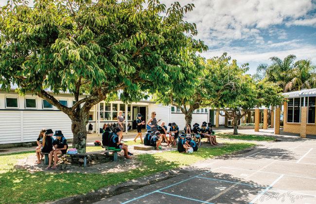 자유롭게 앉아 도시락을 먹고 있는 타우랑가 필란스 포인트 학교 학생들.