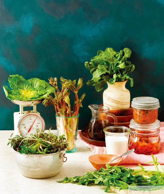 봄나물 X 발효식품 면역력 2배 밥상