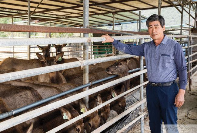 전남 곡성에 위치한 오산사슴농장에서 국내산 녹용 생산에  힘쓰는 정환대 회장.