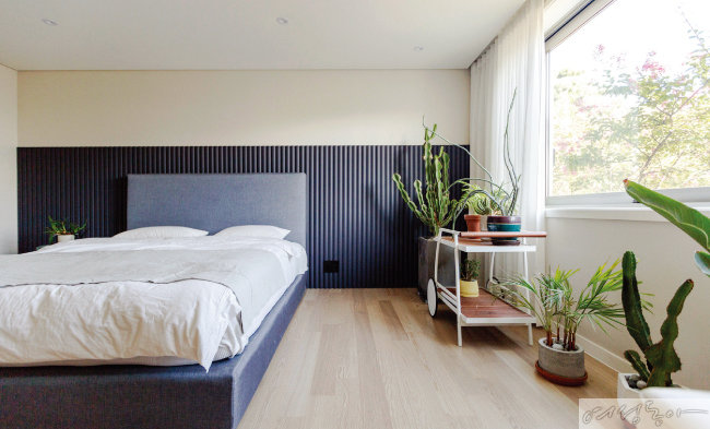 블루 그레이 컬러로 한 벽면을 꾸민 침실. 따뜻한 원목 바닥과 한편에 놓은 식물이 방을 더욱 아늑하게 만들어준다.