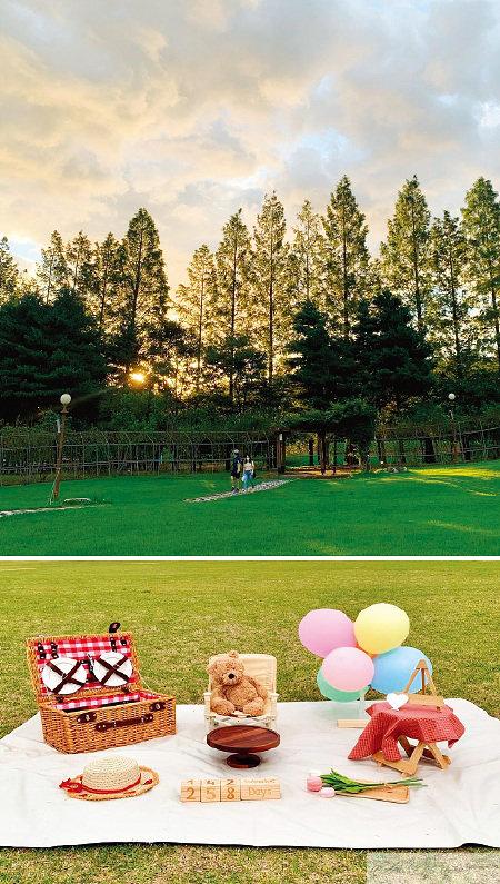 @picnic_sejong