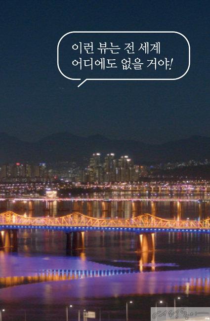 응봉산 정상에서 바라본 서울의 야경.
