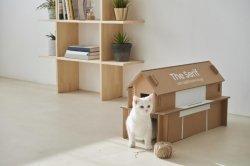 TV 포장박스로 만든 강아지, 고양이 집 보여주세요!
