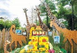 세계 최다산 기린 '장순이' 35번째 생일