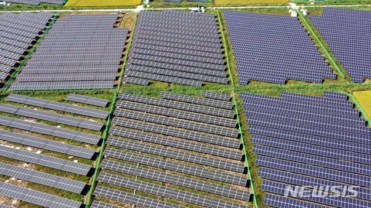 태양광에 여의도 31배 농지 줄었다식량안보·경제성 다 놓칠라