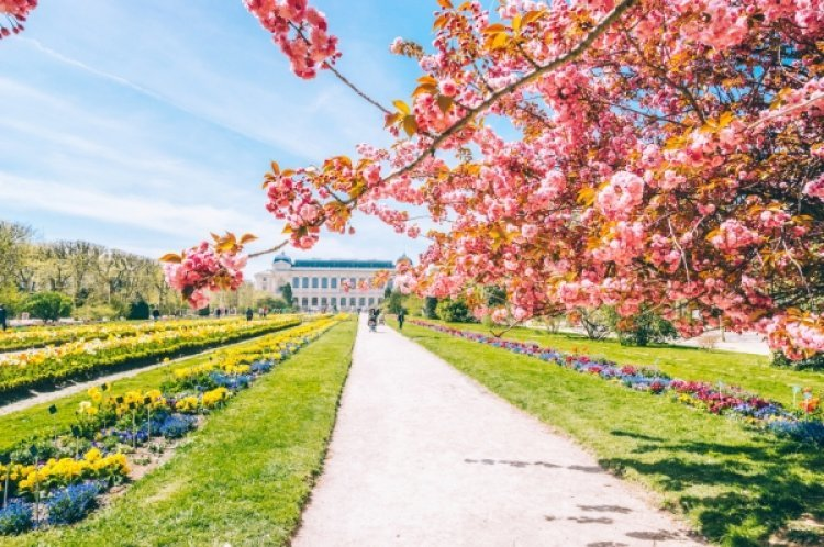 코로나19 끝나면 한국인이 가장 가고 싶은 해외 여행지는?