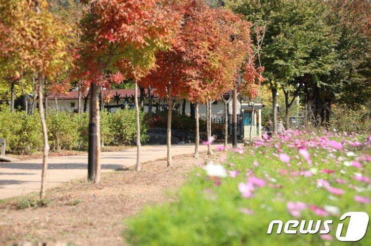 '레트로 감성' 물씬 '서남권 오래가게 관광코스' 5곳 개발