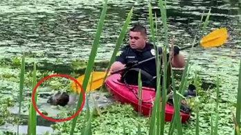 연못에 빠진 댕댕이 카약 타고 구조한 美경관