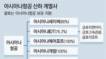 [단독]'노딜' 아시아나, 연내 자회사 분리 매각 추진