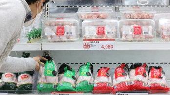 설 장바구니 물가 '비상'…계란 한판에 사과 10개 '4만원'