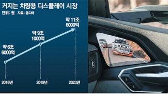 [단독]현대차에 삼성 OLED… '현-삼 동행' 속도낸다
