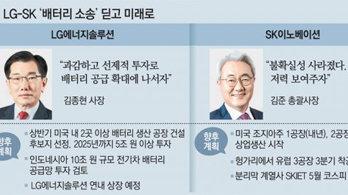 """""""다시 뛰자 K-배터리"""" LG-SK 분쟁해소로 투자 속도"""