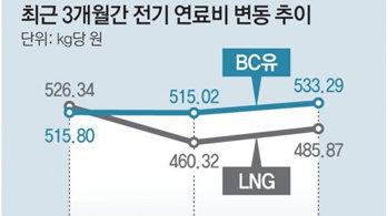 """정부, 전기요금 2개 분기 연속 동결, """"물가 부채질 우려""""… 연료비 연동 유보"""