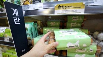 물가 4개월째 2%대 '고공행진'…계란 57%↑·기름값 20%↑