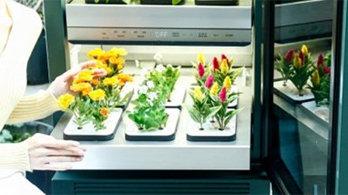날로 똑똑해지는 가전, 식물도 키워준다