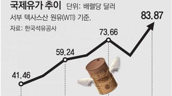 정부, '11월~내년3월' 유류세 한시 인하 검토