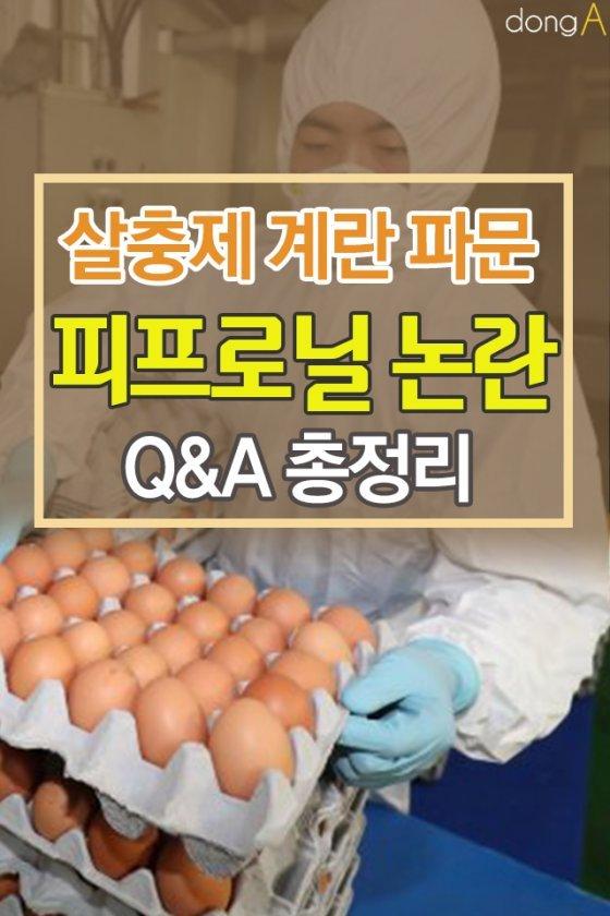 [카드뉴스] 피프로닐 검출 계란, 먹어도 안전할까?
