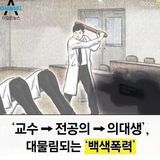 [카드뉴스]교수→전공의→의대생, 대물림되는 '백색폭력'