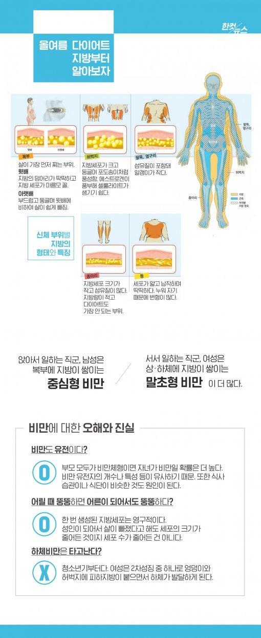 [한컷뉴스] 살이 찌면 배부터 나오는 이유